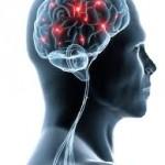 La importancia de la fisioterapia en la esclerosis múltiple