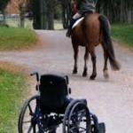 Equinoterapia: caballos para mejorar la salud